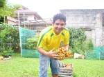 (tomate e pimentão produzido de forma orgânica).