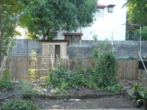 Galinheiro ao fundo e a cerca de bambu